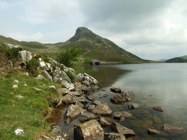 Great Cregennan Lake and Bryn Brith (383m)