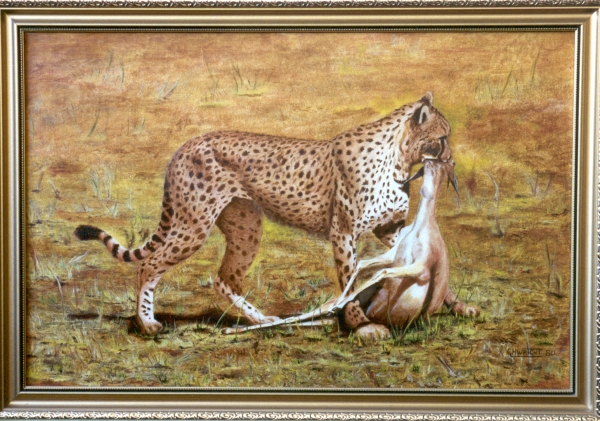 Cheetah with Deer